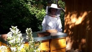 Imkerin Johanna Jäger mit den Liebermann-Bienen