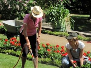 Ehrenamtliche Gärtnerinnen helfen bei den Pflegearbeiten.