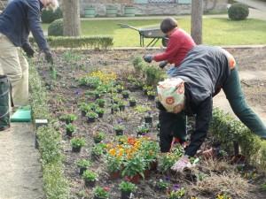Ehrenamtliche Gärtnerinnen bei der Frühjahrsbepflanzung im Liebermann-Garten