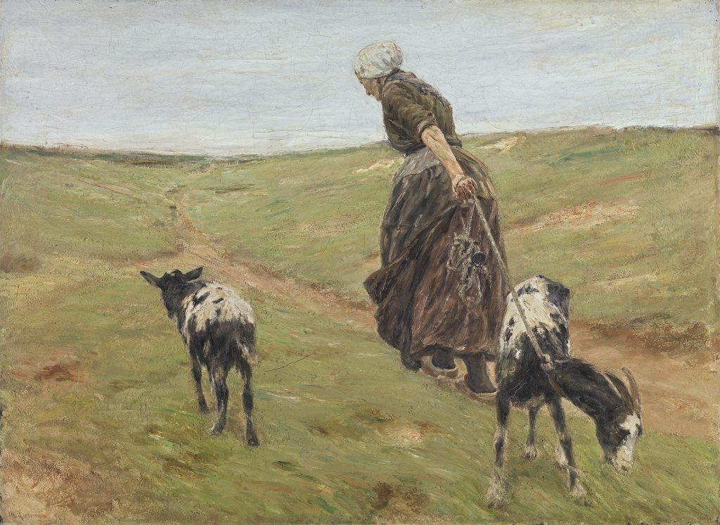 Eine Frau mit brauner Bauernkleidung zieht eine schwarzweiße Ziege an einem Strick hinter sich her. Neben ihr läuft eine weitere schwarzweiße Ziege. Die Frau marschiert auf einem Trampelpfad auf den Dünen und ist mit dem Rücken zugewandt. Der Himmel ist blau.