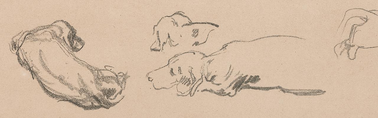 Details einer Dackelstudie Max Liebermanns mit einem Dackel der dem Rücken zugewandt liegt und einem Dackel der im Profil liegt. Die Dackel sind nur in schwarzen Umrissen skizzenhaft dargestellt.